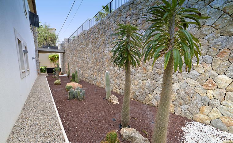 Garten Steinwand Kaktus